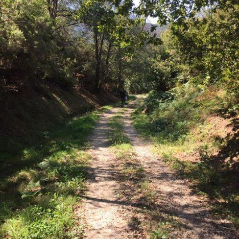Camino Primitivo – Tag 12